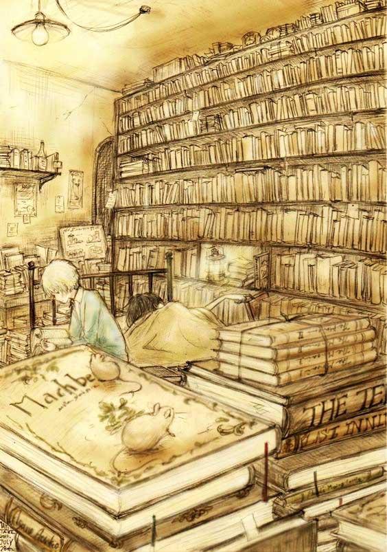 BiblioA8.jpg
