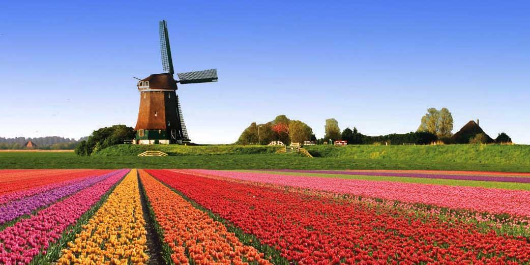 Hollandais8B.jpg