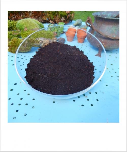 Jardin d'intérieur: ajouter la terre dans le récipient