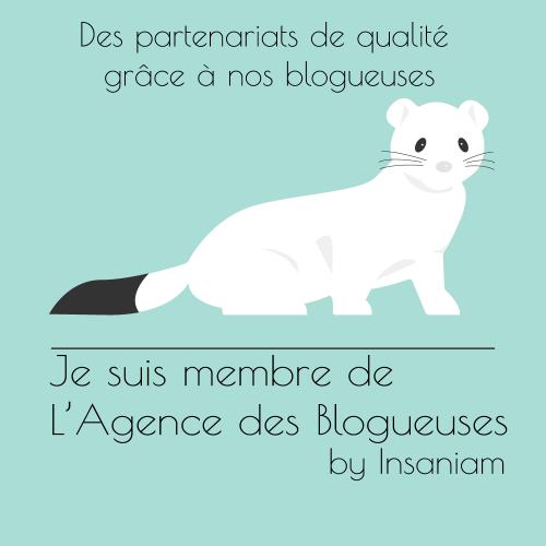 l'agence des blogueuses