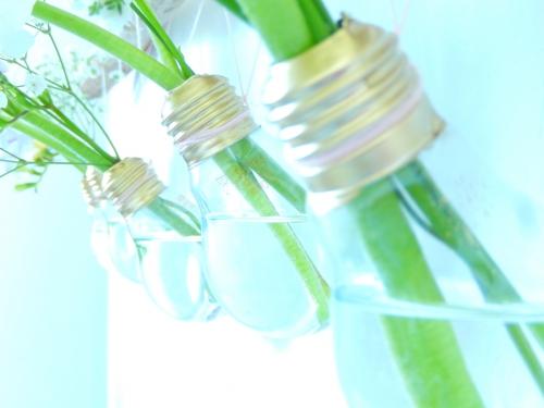 des ampoules pour fleurir son intérieur 3