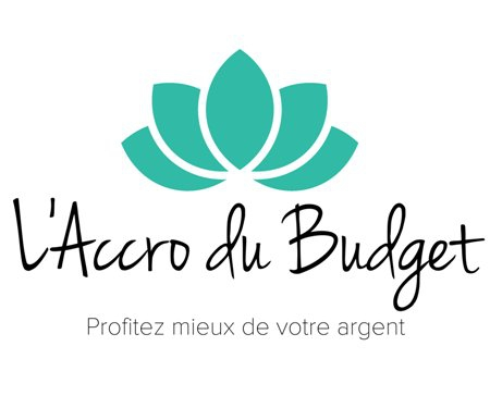 Blog l'accro du budget
