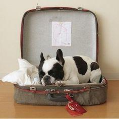 la valise vintage dans la décoration 14