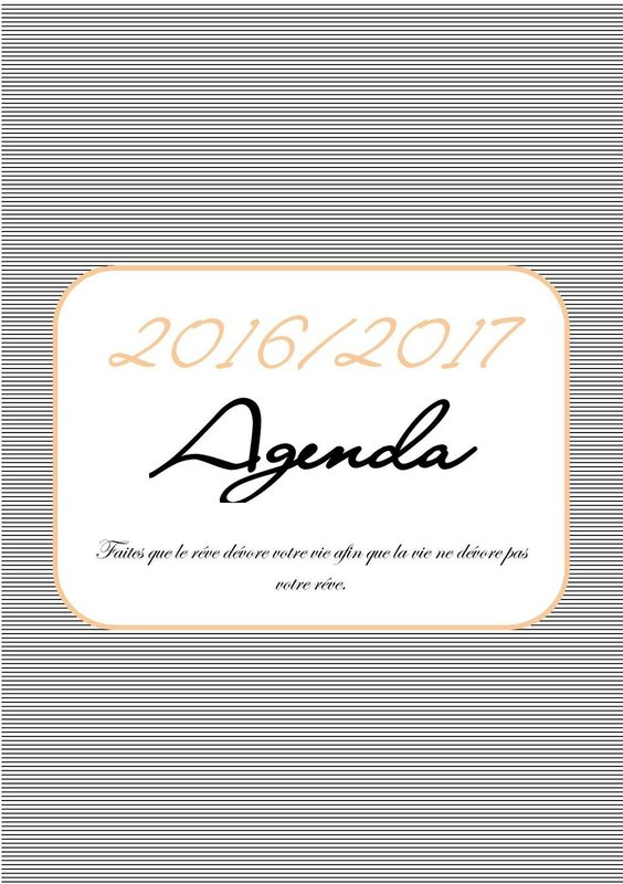 Populaire À imprimer : l'agenda 2016/2017 en format A5 gratuit - Mon carnet  SK78