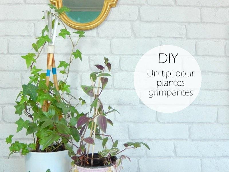 diy un tuteur façon tipi pour plantes grimpantes