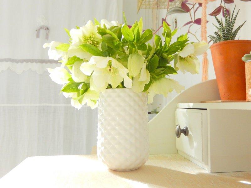 bouquet de roses de noël