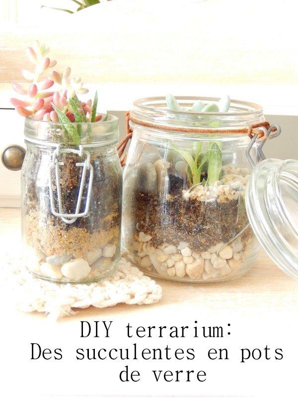 diy terrarium pour succulentes en bocal en verre 2