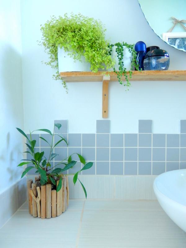 mettre des plantes dans sa salle de bain