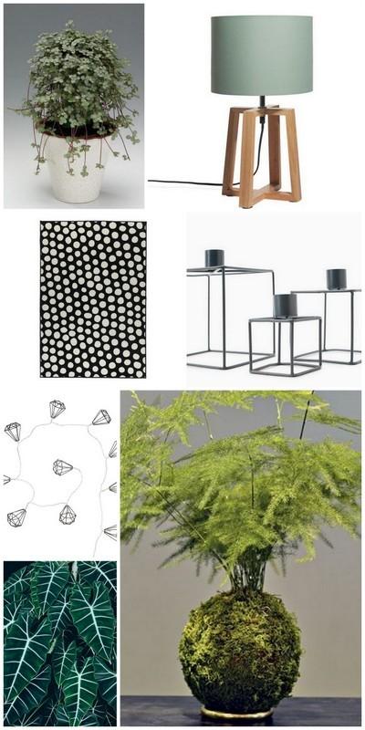 Aménagement du salon inspiration vert blanc bois noir