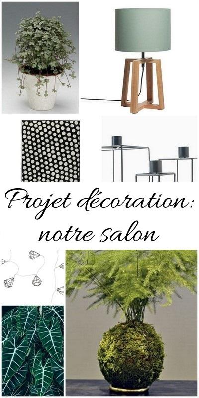 Aménagement du salon inspiration vert blanc bois noir 1