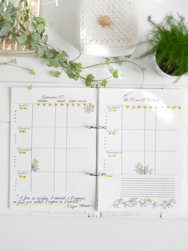 organisation bullet journal page hebdomadaire par heures