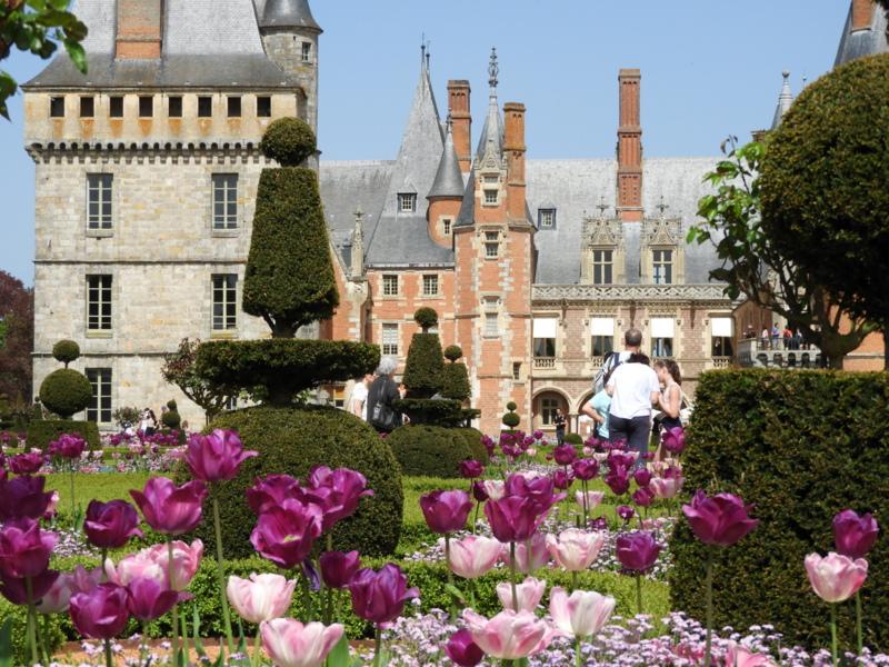 visite touristique : les tulipiades au chateau de maintenon 1