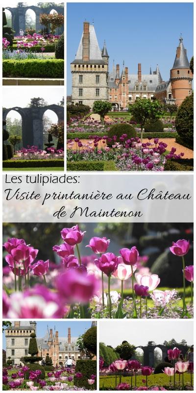 visite touristique : les tulipiades au chateau de maintenon 4