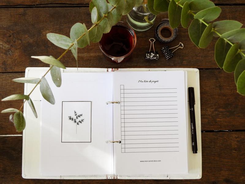 Fiches complémentaires pour Planner ou bullet journal à imprimer gratuitement