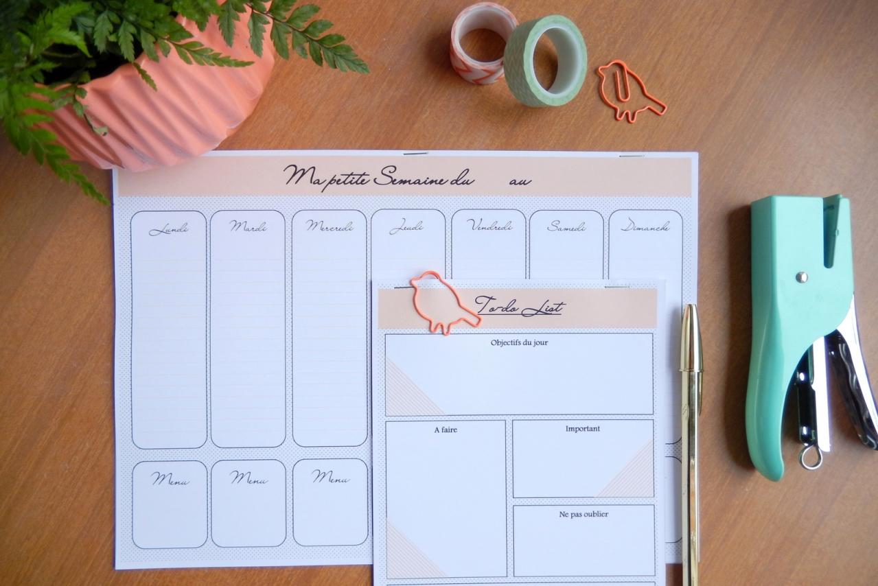 un semainier et une to do list imprimer mon carnet d co diy organisation du quotidien. Black Bedroom Furniture Sets. Home Design Ideas
