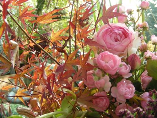 bouquet-novembre.jpg