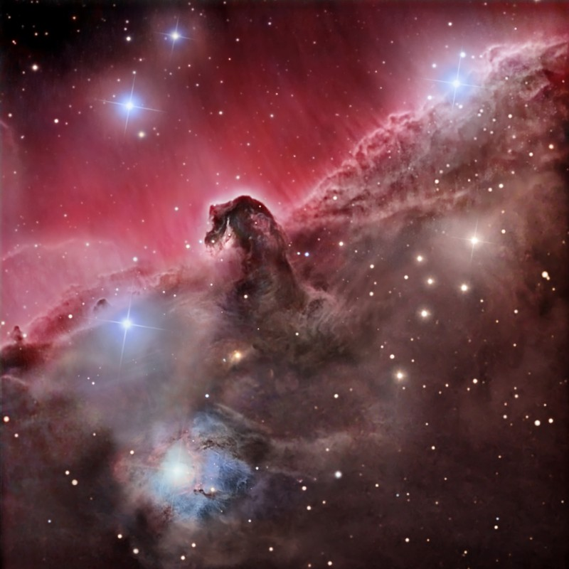 Tête de cheval Orion.jpg
