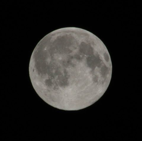 Lune Christian Cellier.jpg