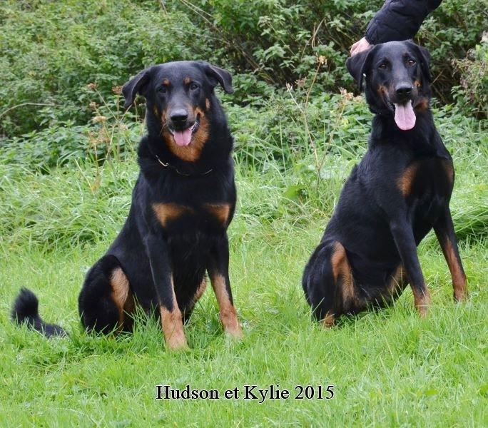 Hudson et Kylie.JPG