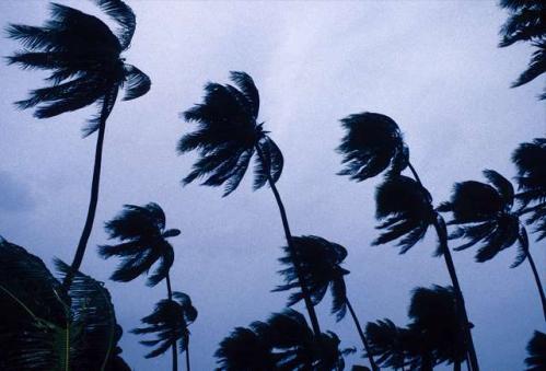 Photo 04bis - Cyclone.jpg