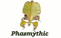Phasmythic