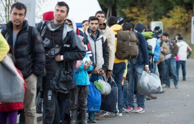 648x415_des_migrants_et_refugies_attendent_apres_avoir_traverse_la_frontiere_avec_l_autriche_pres_de_wegscheid_dans_le_sud_de_l_allemagne_le_1er_novembre_2015.jpg