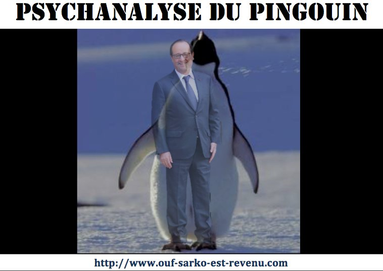 PSYCHANALYSE_DU_PINGOUIN_copie.jpg