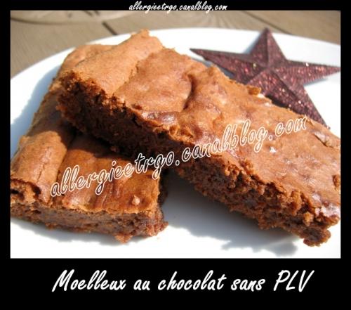 Moelleux au chocolat sans PLV allergieetrgo.jpg