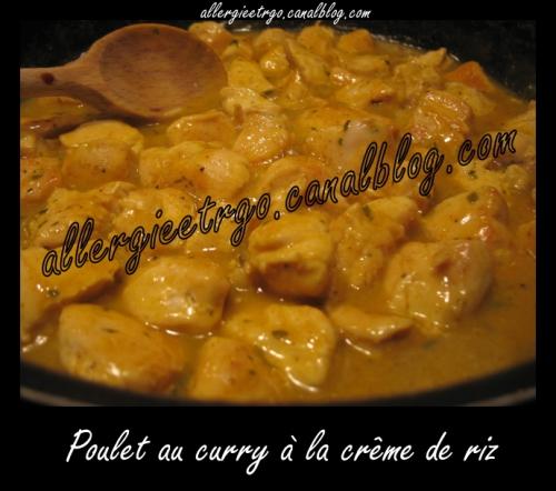 Poulet au curry sans PLV.jpg