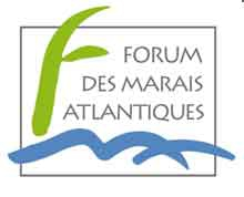 logo-FMA.jpg