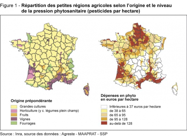 .-L'évolution-de-l'utilisation-des-pesticides-entre-2000-et-2010.jpg