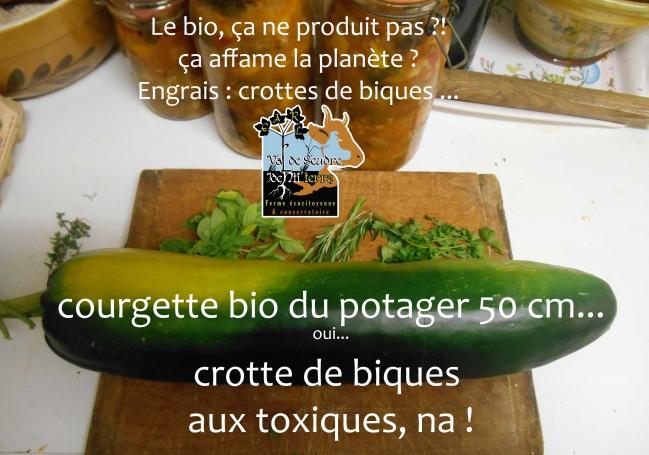 crotte-de-biques-aux-toxiques.jpg