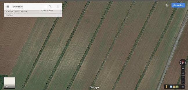 vue du ciel agroforesterie.JPG