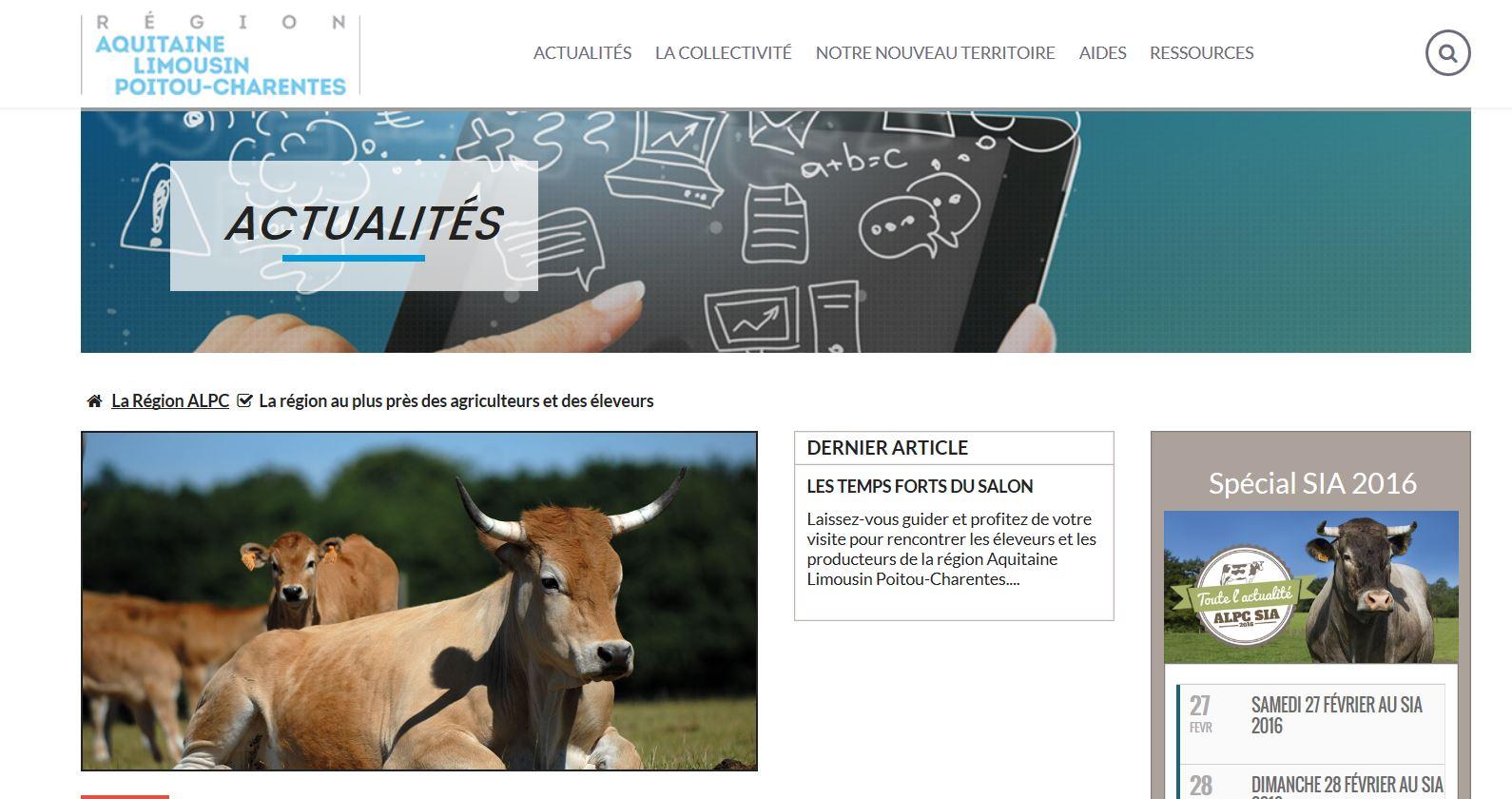 les vaches de benoît sur le site de la région.JPG