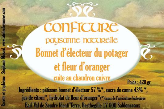 bonnet-d'électeur-web.jpg