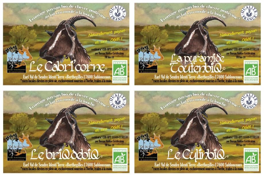 planche-4-étiquettes-fromages-earl-val-de-seudre-identi'terre.jpg