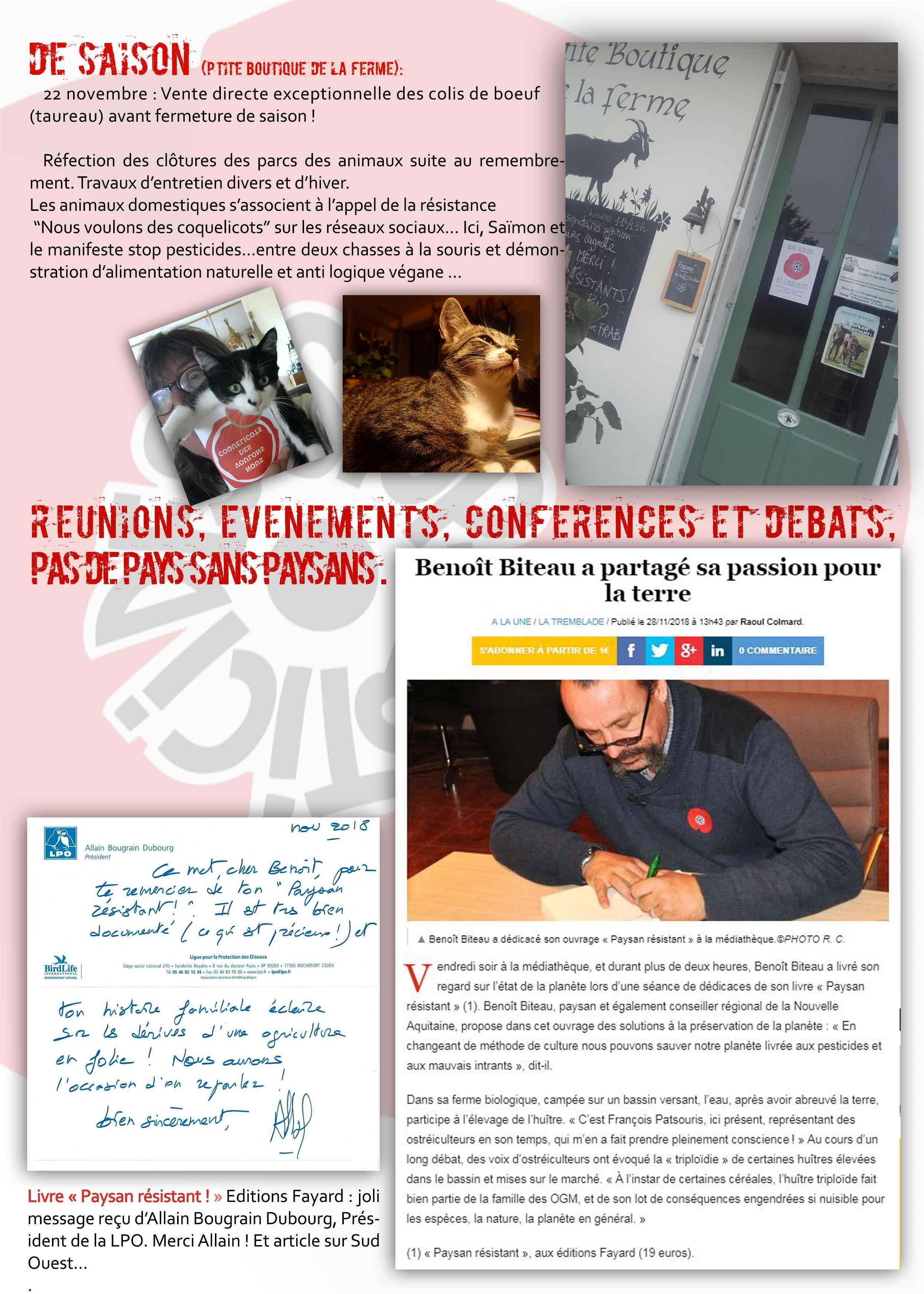 N°2--page-2-jpg.jpg