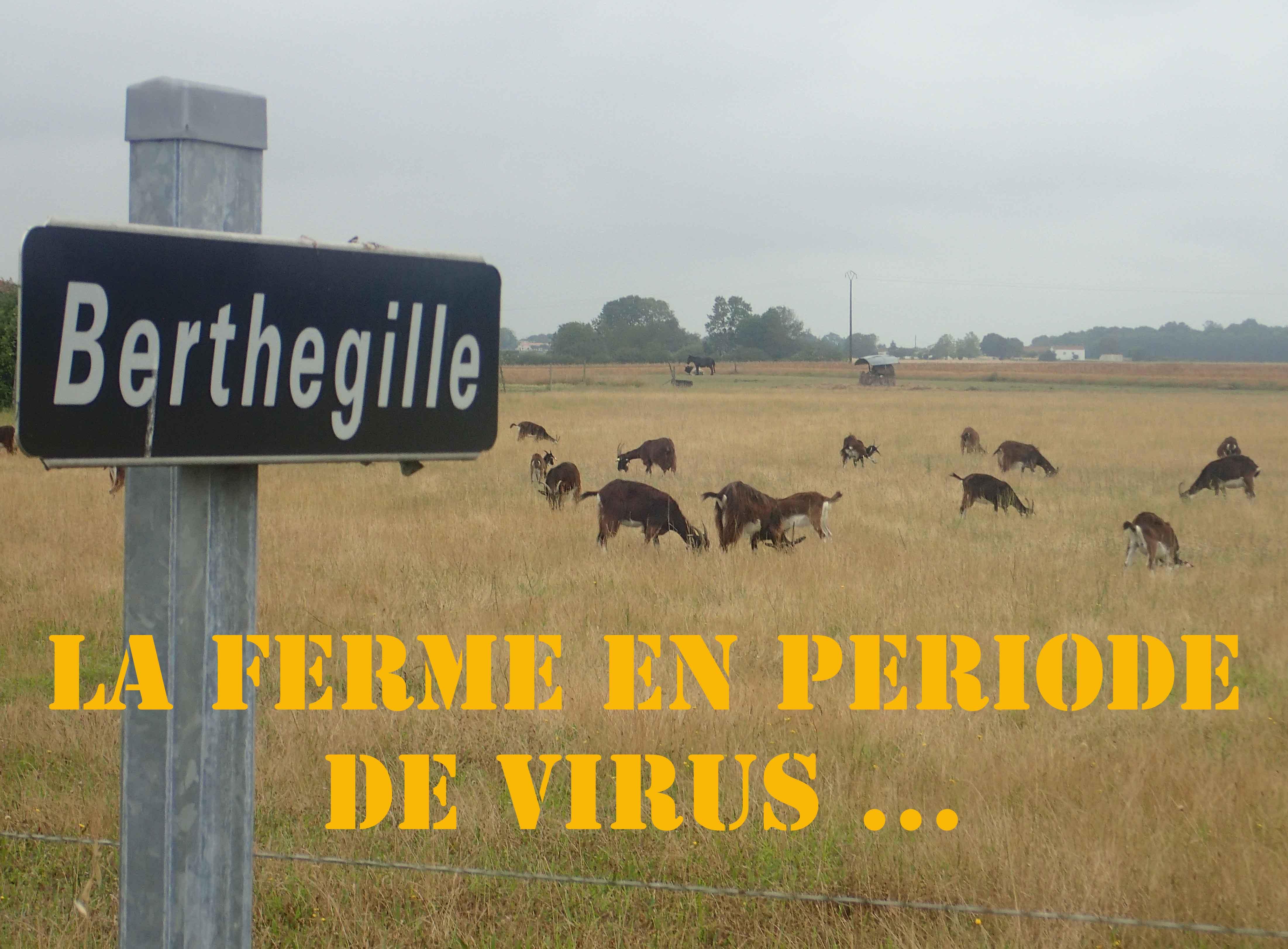 en-période-de-virus.jpg