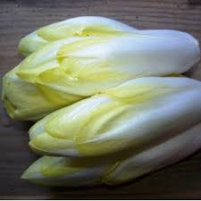 Endives blanches.jpg