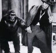 Homme et singe.PNG