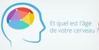 Age du cerveau.PNG