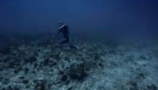 Fonds marins.PNG