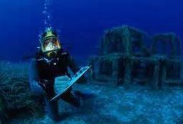 Récifs artificiels.PNG