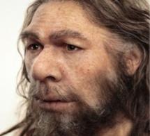 Neandertal.PNG