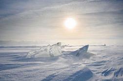 Antarctique.PNG