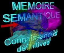Mémoire sémantique.PNG