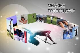 Mémoire procédurale.PNG