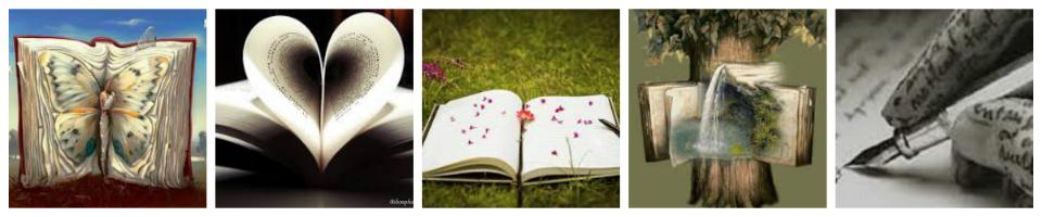 Lili Lecture : le site pour les lecteurs en tout genre