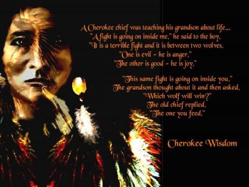 native-cherokee-wisdom-woldfeed.jpg