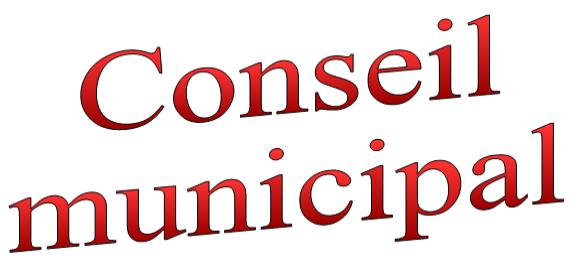 conseil-municipal-2.png